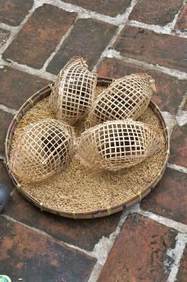 chiangmai-bird in cage