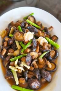 chiangmai-yunnan stirfried mushroom