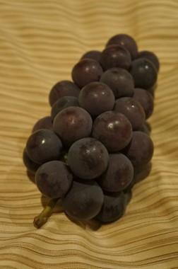 japanese grapes2