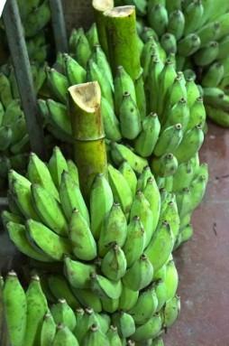 warorot market 31