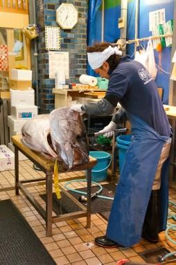 cutting tuna 01
