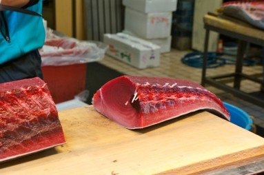 cutting tuna 05