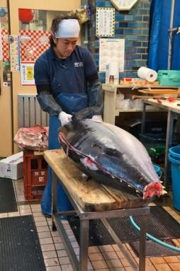 cutting tuna 10