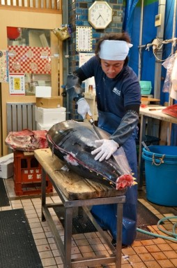 cutting tuna 11