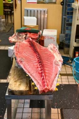 cutting tuna 17