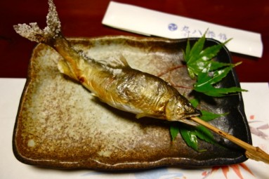 maruhachi ryokan - ayu fish2