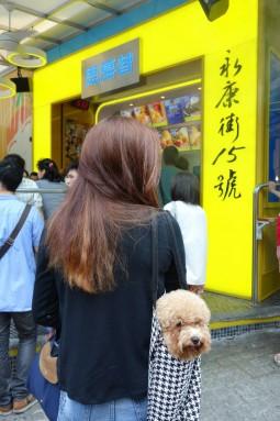 15, Yong Kang Street, Taipei